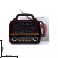 Портативная FM колонка FP-231