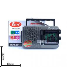 Портативная FM колонка FP-1820R