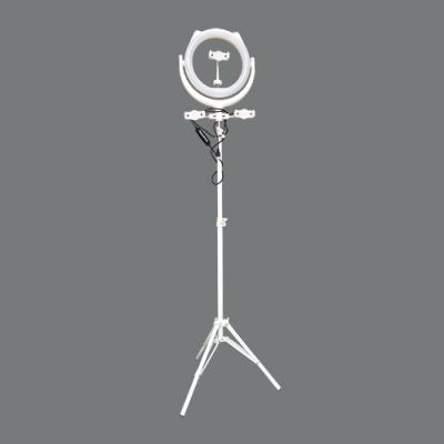 Светодиодная лампа со штативом RGB (26cm)
